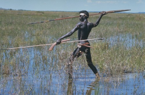 Australian Aborigine in Swamp Darwin